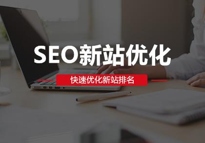 SEO新站优化-深圳快搜科技有限公司